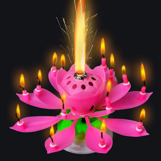 Singing Candle Lotus Flower Musical Birthday Candle The Compleat Kitchen Hawaii